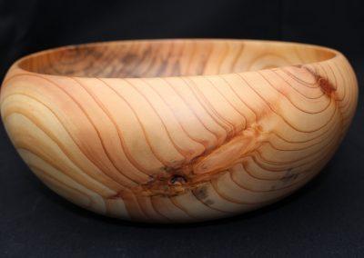 1.8.12 - Duglasie - H 10,5 cm - Ø 24,5 cm